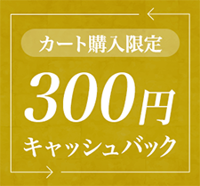 Web購入限定 300円キャッシュバック